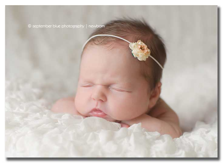 Long Island Newborn Photographer, Newborn in Flower Headband