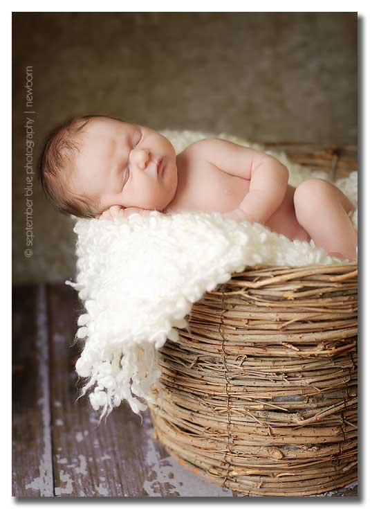 Long Island Newborn Photographer, Baby in twiggy nest basket