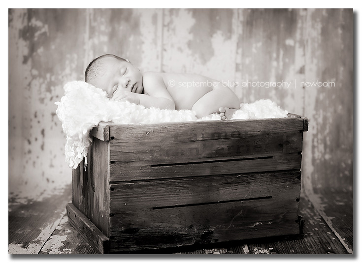 baby in vintage crate