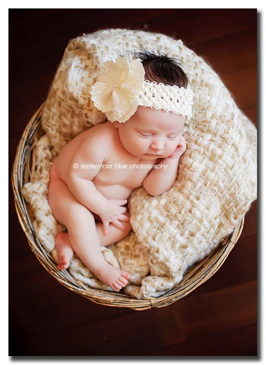Posted in newborns